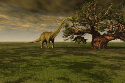 Самые большие динозавры!